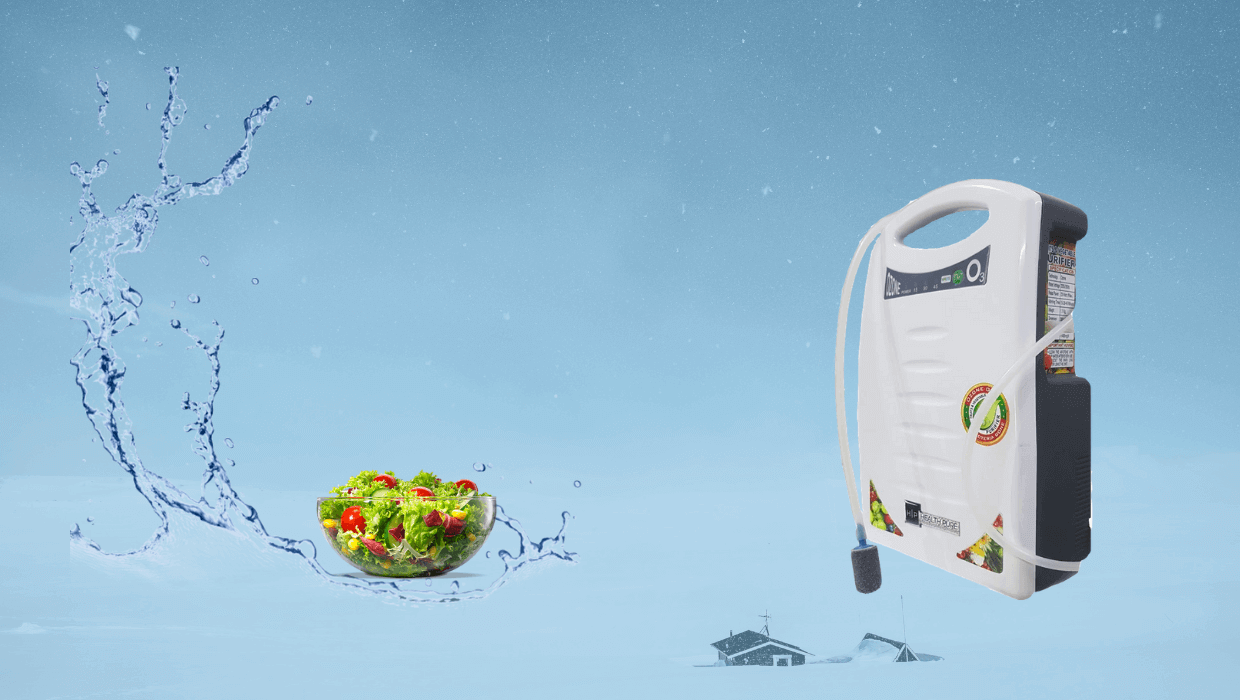vegetable purifier & fruits purifier